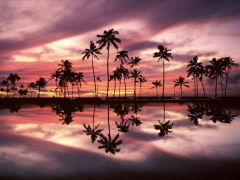 hawaii08.jpg